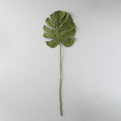 Canvas Monstera Leaf Stem