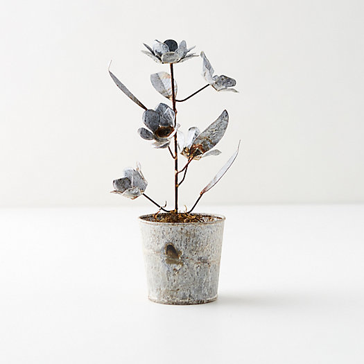 View larger image of Aged Metal Potted Flowers + Stems, Silver