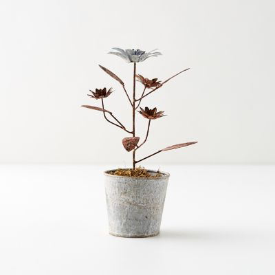 Aged Iron Potted Daisies, Silver + Copper