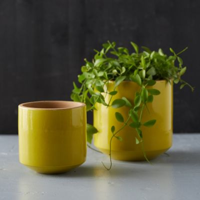 Citron Ceramic Pot