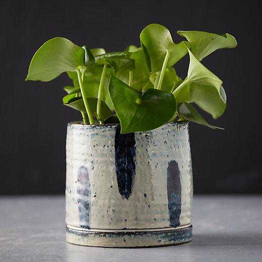 View larger image of Ceramic Brushstroke Pot
