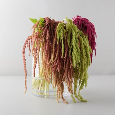 Amaranth Bouquet
