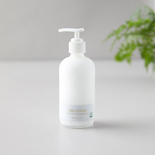 View larger image of CBD Body Lotion