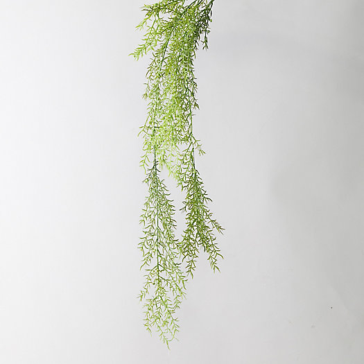 View larger image of Faux Asparagus Fern Pick