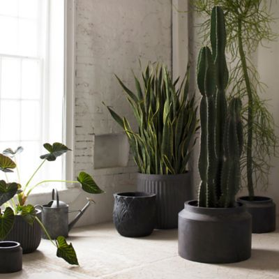 Fiber Jar Planter