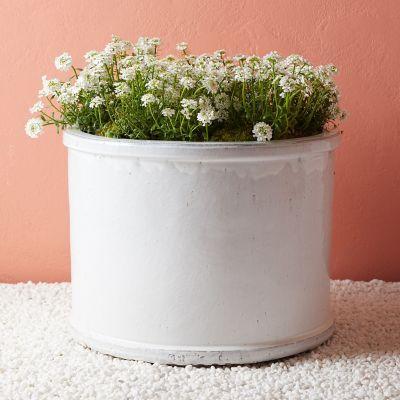 Ceramic Cylinder Planter