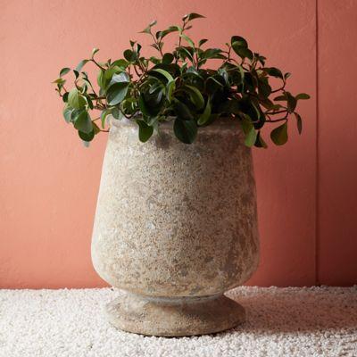 Tall Ceramic Urn