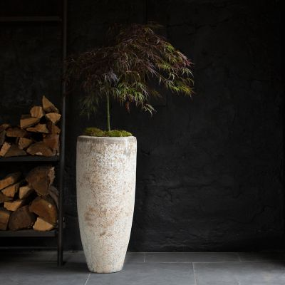 Barnacle Tall Modern Pot