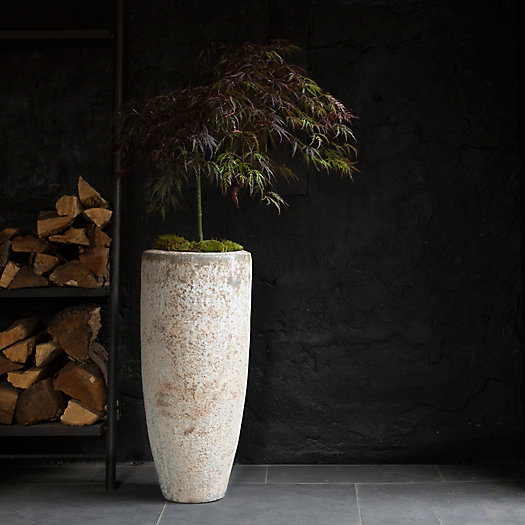 View larger image of Barnacle Tall Modern Pot