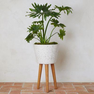 Acacia Wood Leg Fiber Pot