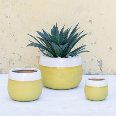 Ceramic Citron Bands Pot