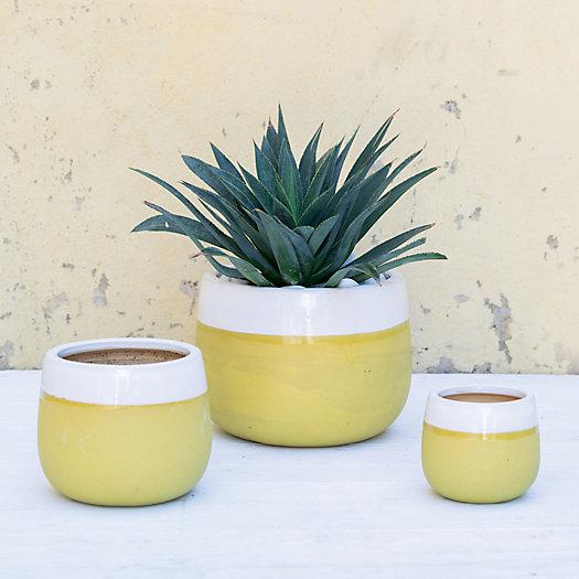 View larger image of Ceramic Citron Bands Pot