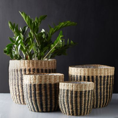 Natural Stripe Basket Pot