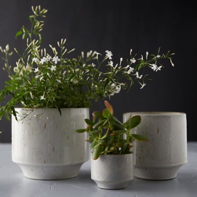 Speckled Ceramic Pot