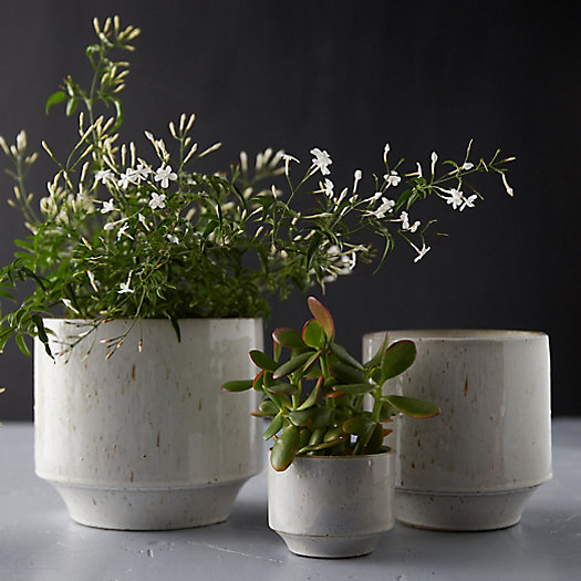 View larger image of Speckled Ceramic Pot