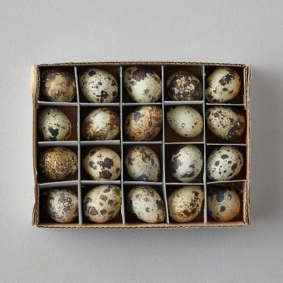 Quail Eggs, Set of 20