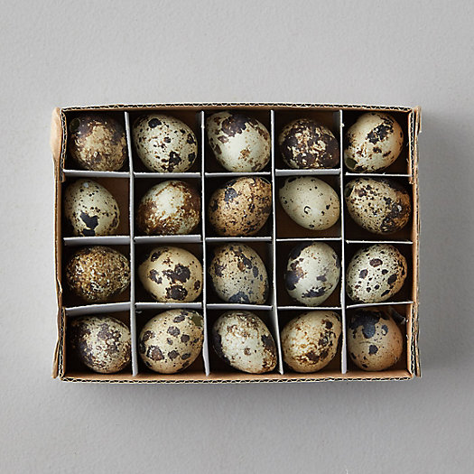 View larger image of Quail Eggs, Set of 20