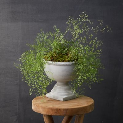 Rounded Cement Urn