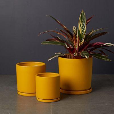 Porcelain Cylinder Pot