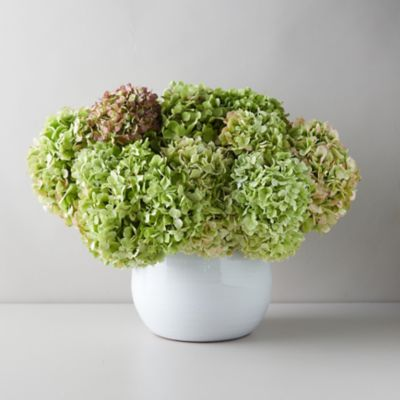 Fresh Antique Hydrangea Bouquet