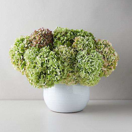 View larger image of Fresh Antique Hydrangea Bouquet