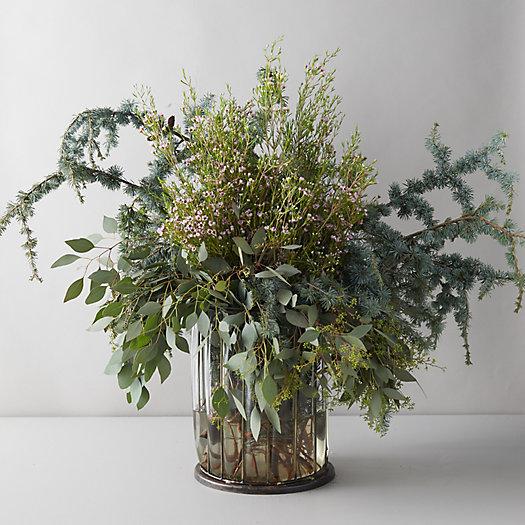 View larger image of Fresh Atlas Cedar + Eucalyptus Bunch