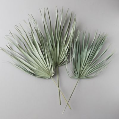 Preserved Palm Frond Bunch