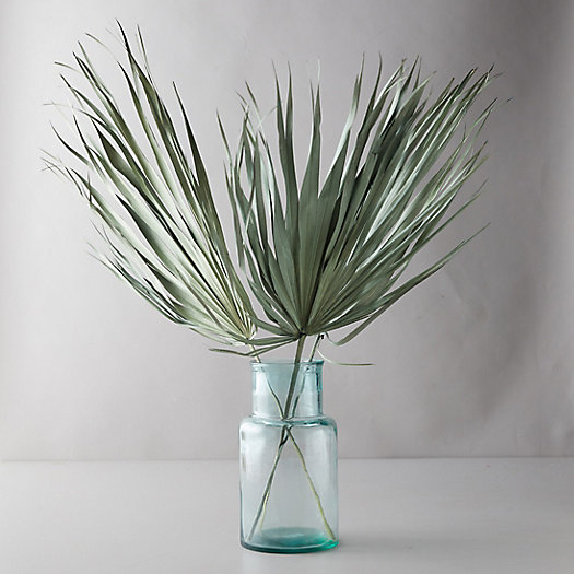 View larger image of Preserved Palm Frond Bunch