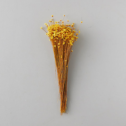 View larger image of Dried Glixia Bunch