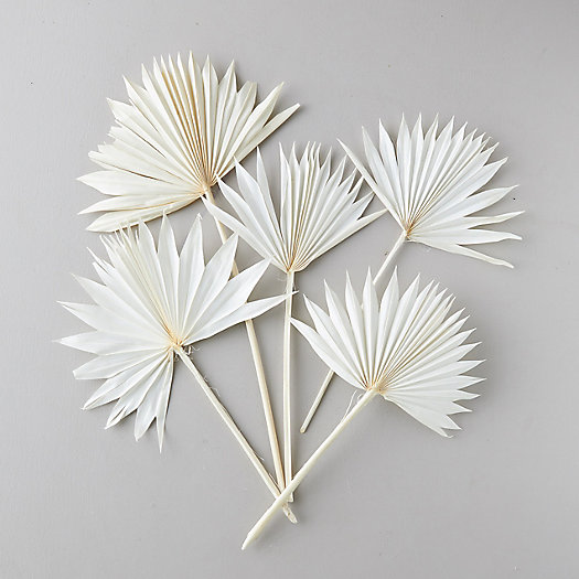 View larger image of Preserved White Palm Frond Bunch