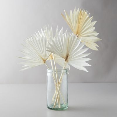 Preserved White Palm Frond Bunch