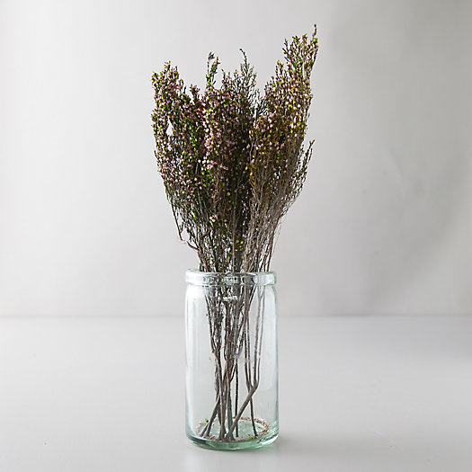 View larger image of Preserved Heather Bunch
