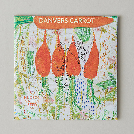 View larger image of Danvers Carrot Seeds