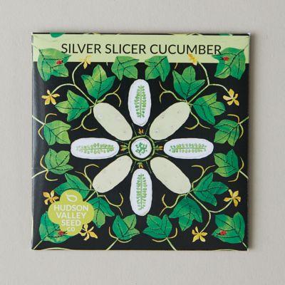 Silver Slicer Cucumber Seeds