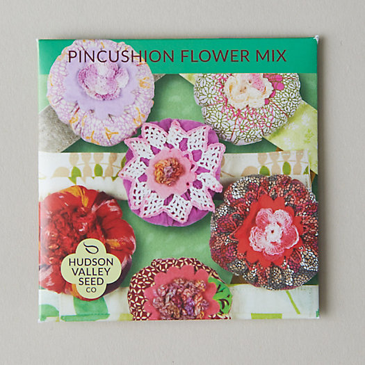 View larger image of Pincushion Flower Seed Mix