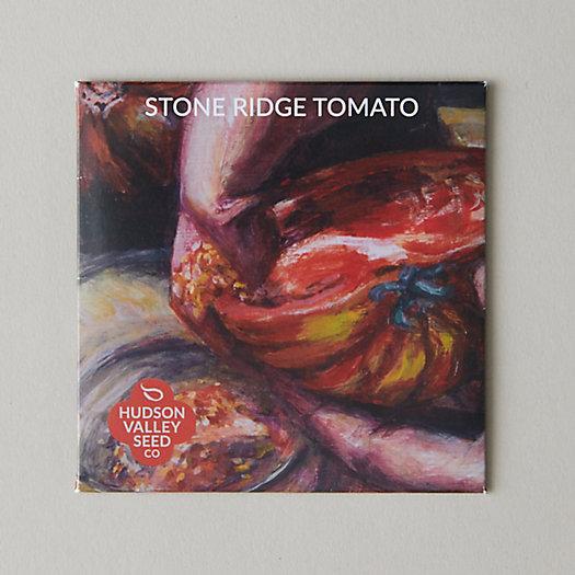 View larger image of Stone Ridge Tomato Seeds