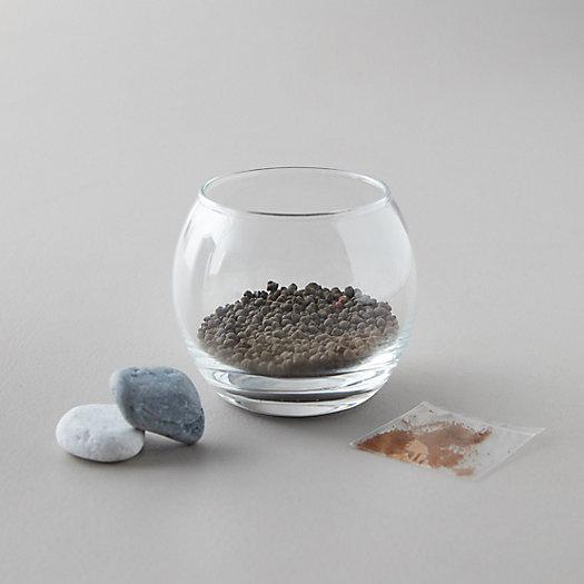 View larger image of Calming Water Garden Grow Kit