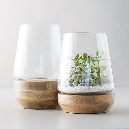 View larger image of Farmhouse Terrarium