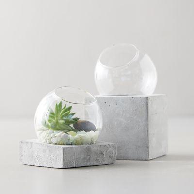 Glass Terrarium, Cement Base