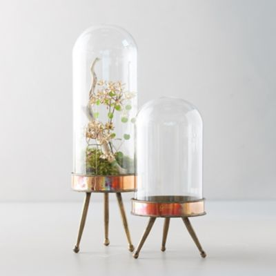 Distressed Metal + Glass Terrarium on Stand