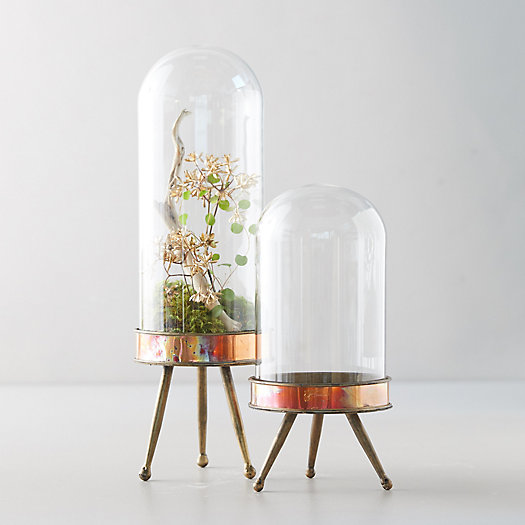 View larger image of Distressed Metal + Glass Terrarium on Stand