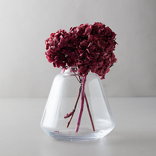 View larger image of Preserved Hydrangea Bunch