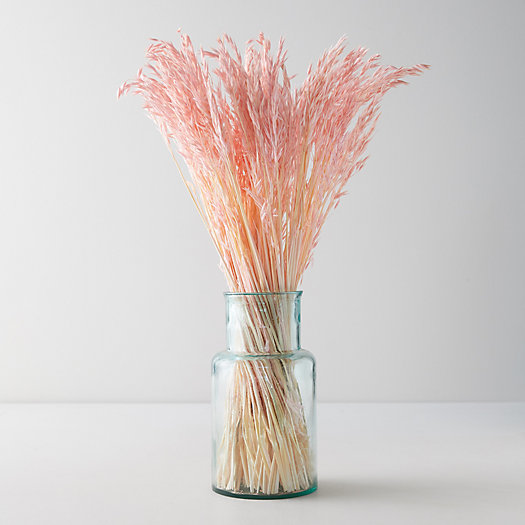 View larger image of Preserved Pink Oat Straw Bunch