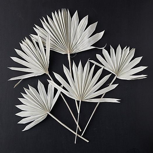 View larger image of Sun Bleached Palm Frond Bunch