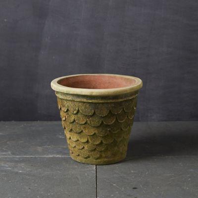 Griffon Clay Planter
