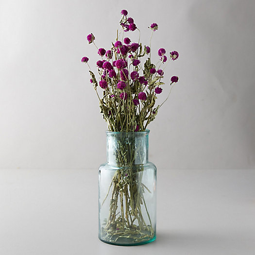 View larger image of Dried Globe Amaranth Bunch