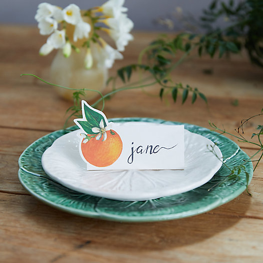 View larger image of Zesty Orange Place Cards, Set of 12