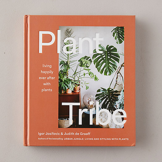 View larger image of Plant Tribe