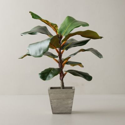 Faux Fiddle Leaf Fig Tree, 18