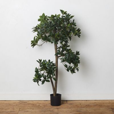 Faux Euonymus Japonicus Tree